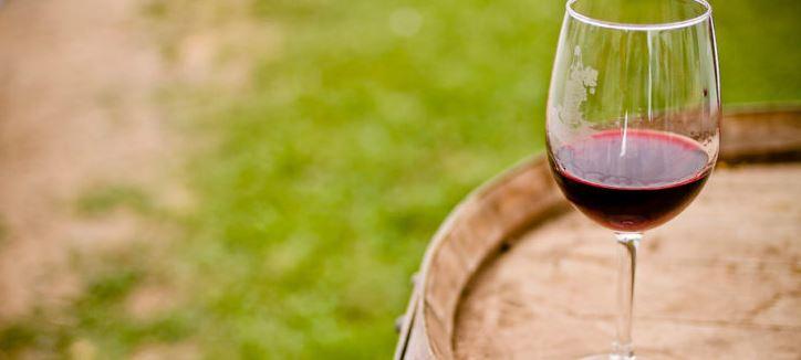 Vino de San Rosendo elegido entre los 100 mejores del mundo