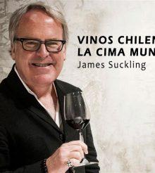 Vino chileno…el mejor
